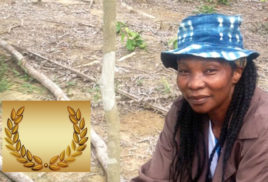 CecileNdjebetmobilizes mangrove restoration project on Cameroon coast