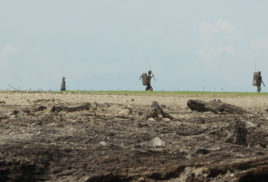 Land degradation compromises wellbeing of 3.2 billion people, study says