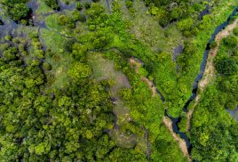 Comparing the three peatland regions most crucial for climate change
