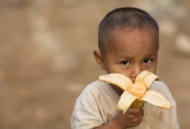 Women and children disproportionately affected by malnutrition, report finds
