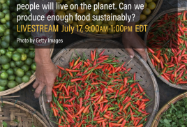 """New World Resources Report on """"Creating a Sustainable Food Future"""""""