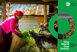 Experts at biodiversity conference call for linking human and livestock health with ecosystems